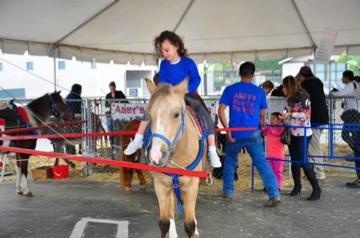 pony-ride05